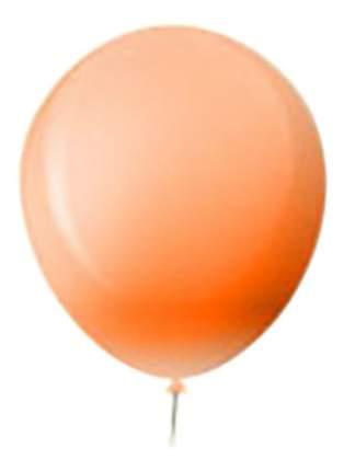 Набор шаров Riethmüller Everts 10 шариков оранжевый