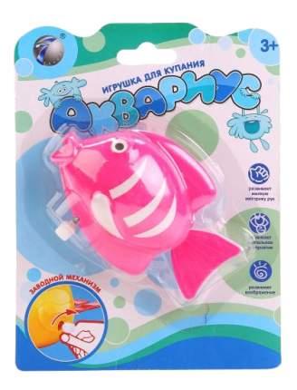 Заводная игрушка для купания Shantou Gepai Рыбка аквариус