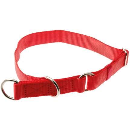 Ошейник-полуудавка для собак ZooOne, регулируемый, красный, 25 мм x 40-60 см
