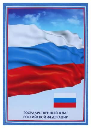 """Тематический плакат """"Флаг Российской Федерации"""""""