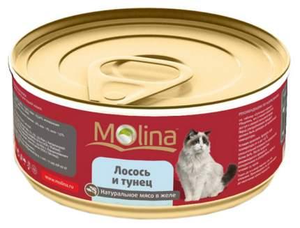 Консервы для кошек Molina, лосось, рыба, 12шт, 80г