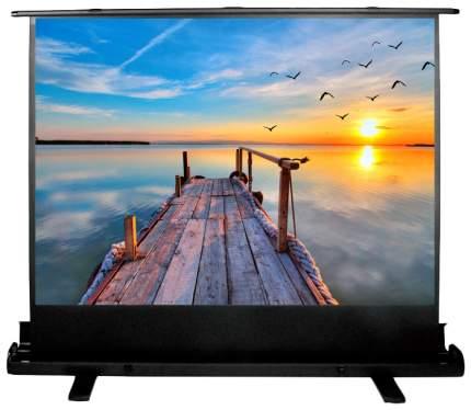 Экран для видеопроектора Cactus FloorExpert CS-PSFLE-200X113
