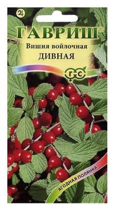 Семена Вишня войлочная Дивная, 0,5 г Гавриш