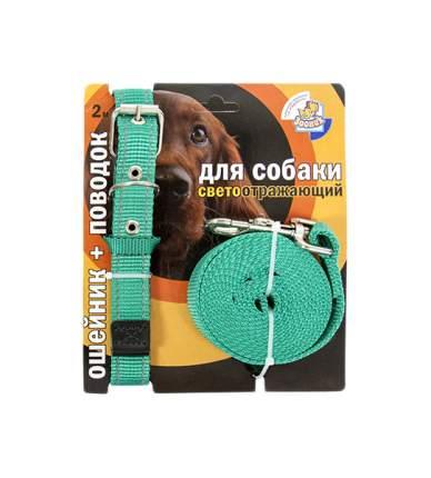 Ошейник и поводок для собак Зооник, светоотражающий, капрон, зеленый, 25мм, 37-51 см и 3 м