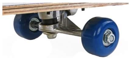 Детский скейтборд Shantou Gepai Speedy 79х20 635085