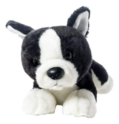 Мягкая игрушка SOYA Щенок породы бостон-терьер, 20x9x11 см