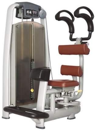 Торс-машина Bronze Gym A9-011
