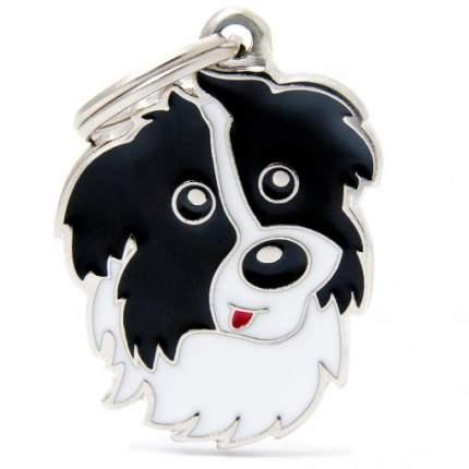 Адресник на ошейник для собак My Family Colors Бордер-колли, средний, 2,5х3,5 см