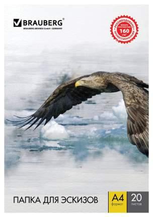 Бумага для рисования BRAUBERG Орел 125230 белый 20 листов