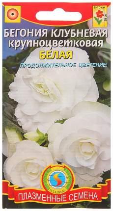 Семена Бегония клубневая крупноцветковая Белая, 5 драже Плазмас