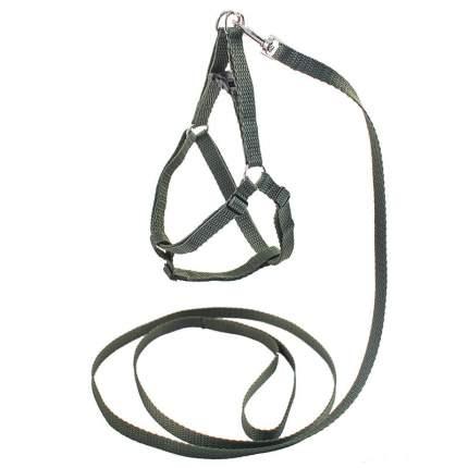 Комплект Ecco-Sport Quick для собак Дарэлл (поводок 10мм х 1,2м + шлейка 10мм, Серый)