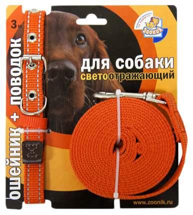 Ошейник и поводок для собак Зооник, светоотражающий, капрон, оранжевый, 25мм, 37-51см и 3м