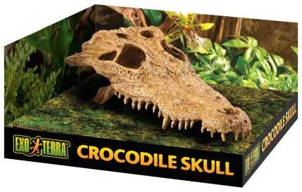 Декорация для террариума Exo Terra Череп Крокодила PT-2856