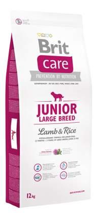 Сухой корм для щенков Brit Care Junior Large Breed, для крупных пород, ягненок и рис, 12кг