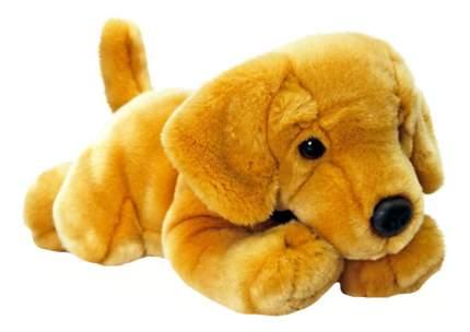 Мягкая игрушка Keel Toys Собака лабрадор