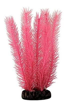 Laguna Растение светящееся Кабомба красная, 10 cм