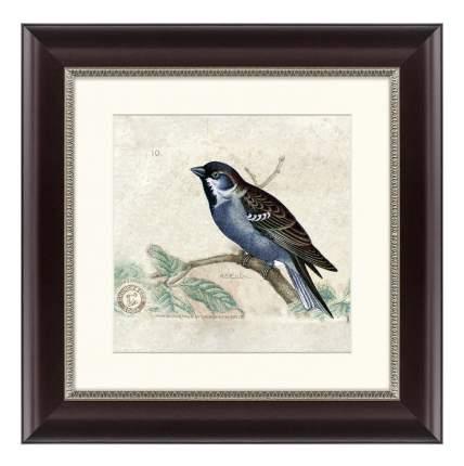 Картина Картины в Квартиру Птицы 35 х 35 см