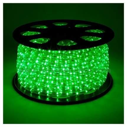 Дюралайт XMAS-GROUP DL-LED-100-3G Зеленый