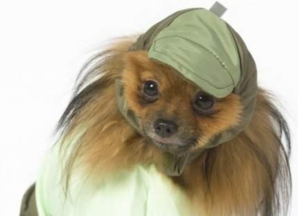 Шапка для собак ТУЗИК йорк, гриффон, шпиц, унисекс, в ассортименте