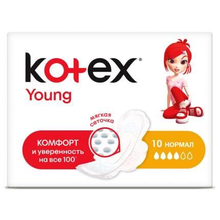 Kotex прокладки янг сетч нормал, 10 шт.
