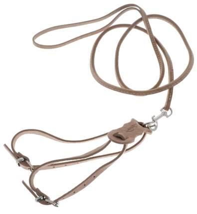 Комплект для мелких собак и кошек Аркон Стандарт №2, шлейка+поводок, светло-коричневый