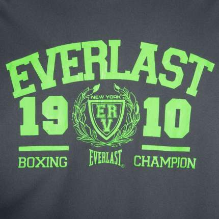 Майка Everlast Sports Brights, grey, XXL INT