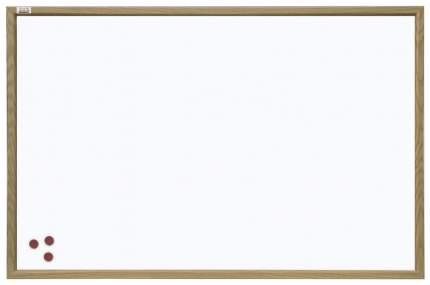 Магнитно-маркерная доска 2x3 TS96 60x90 см