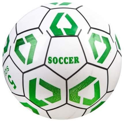 Волейбольный мяч Soccer Champions C20402 №5 white/green