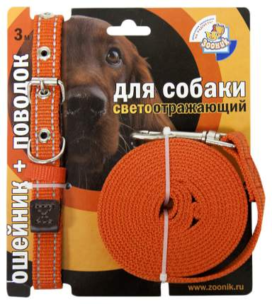 Ошейник и поводок для собак Зооник, светоотражающий, капрон, оранжевый, 20мм, 34-46см и 3м