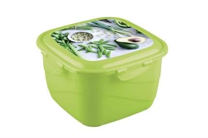 Контейнер для хранения пищи Phibo 4311943 в ассортименте