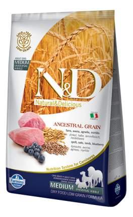 Сухой корм для собак Farmina N&D Medium, для средних пород, ягненок и черника, 2,5кг
