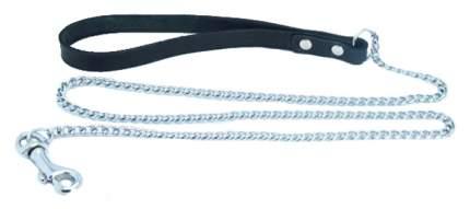 Поводок BDSM Арсенал 57001ars металлический с кожаной петлей