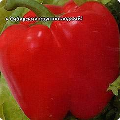 Семена Перец сладкий Квадро Ред, 15 шт, Сибирский сад