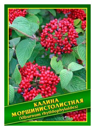 Семена Калина Морщинистолистная, 1 г Симбиоз