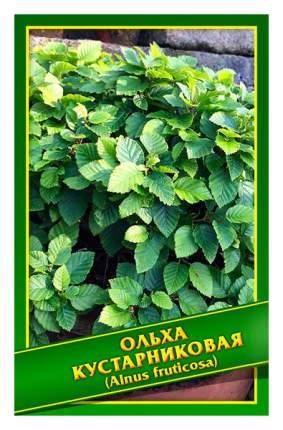 Семена Ольха Кустарниковая, 0,2 г Симбиоз