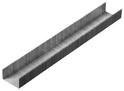 Скобы KRAFTOOL для пневматического степлера, тип 80, 6мм 3000шт