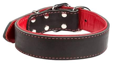Ошейник для собак Gripalle Остин 30 - 35S кожаный с мягкой красной подкладкой 70808