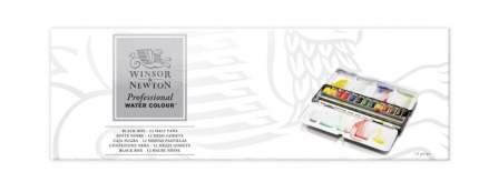 Акварель Winsor&Newton Professional Black Box 12 цветов