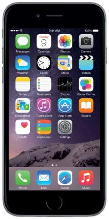 Смартфон Apple iPhone 6 Plus 64GB Space Gray (MGAH2RU/A)