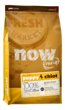 Сухой корм для щенков NOW Fresh Puppy, все породы, индейка, утка, овощи, 11,35кг
