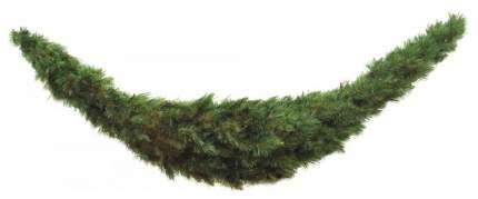 Сваг еловый Triumph Tree Лесная красавица 180 см