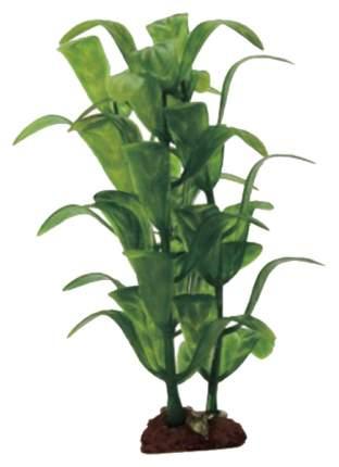 Искусственное растение ArtUniq Staurogyne Set 6x10 набор
