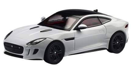 Коллекционная модель Jaguar JDCAFTCR