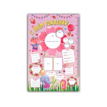 """Книга Плакат в тубусе """"С Днем Рождения"""" (розовый)"""