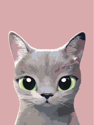 "Картина по номерам Живопись по Номерам ""Кошечка Габби"", 30x40"