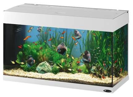 Аквариум для рыб Ferplast Dubai, белый, 125 л