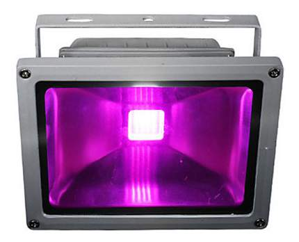 Светодиодный фитопрожектор для досветки растений ЭмиЛайт 10 Вт