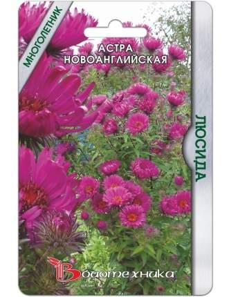 Семена Астра ново-английская Люсида, 40 шт, Биотехника