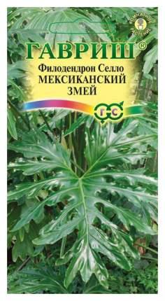 Семена Филодендрон Селло Мексиканский змей, 5 шт, Гавриш