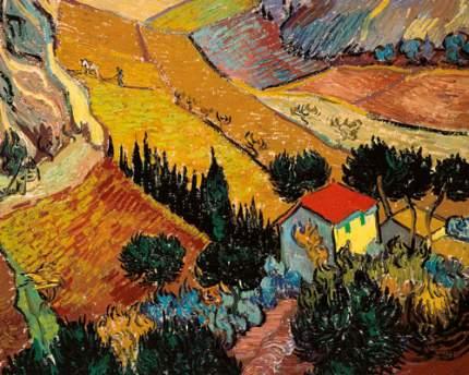 Репродукция Винсент ван Гог, Пейзаж с домом и пахарем 50х62,5см